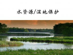 水资源湿地